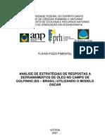 2007_FLÁVIA POZZI PIMENTEL_ANÁLISE DE ESTRATÉGIAS DE RESPOSTAS A DERRAMAMENTOS DE ÓLEO (fala um tico de ondas)