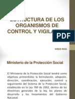 Estructura de Los Organismos de Control y Vigilancia