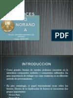 Proceso Noranda_ Expo 11-12-2012