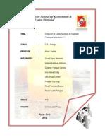 PRACTICA DE LABORATORIO Nº 1 kristhys.docx