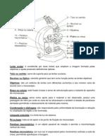 Microscópio - partes, funções e cuidados
