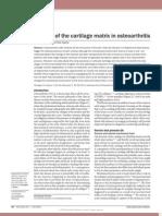 Matrix de Cartilago en OA