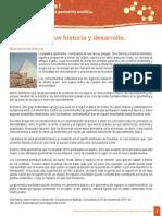 U1 DSC 06 Historia