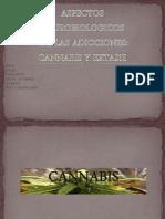 Cannabis y Extasis