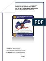 Caribbean International University
