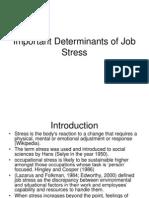 Important Determinants of Job Stress