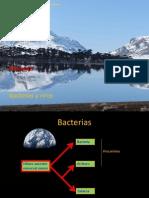 Clase 10 Bacterias y Virus