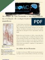 As células de Von Economo e sua importância na evolução do comportamento social em mamíferos