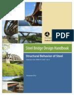Steel Bridge Design