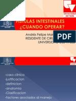 Fistulas Intestinales Andres