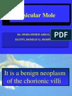 VesicularMole-abdalla