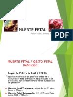 Muerte Fetal 2013