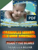 Higado - Pancreas