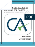 584670 48537 Standards of Auditing Notes 2