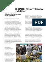 Cap I, Desarrollando La Sustentabilidad, Desarrollo Del Ser