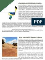 Atlas Brasileiro Biomassa 2013