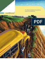 Informe Estado Region 2011-ALTA