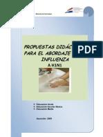 Propuestas Didacticas Para Ah1n1