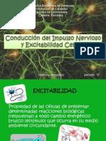 Diapositivas Conduccion Del Impulso y Excitabilidad Celular