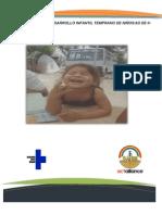 Informe Sobre DPI
