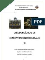 GUÍA DE PRACTICAS DE CONCENTRACIÓN DE MINERALES III
