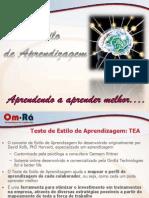 Estilo de Aprendizagem - 2013.pdf