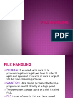 13891 File Handling1gsdgSgggdggddgds