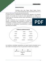 Teorias Cognocitivistas.docx