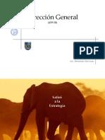 Safari a La Estrategia