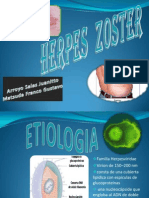 Herpes Zoster Exposicion