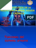 Fisipatologia de La Insuficiencia Renal Cronica y Aguda Trabajo FINALIZADO 2