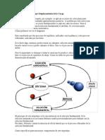 Copia de Estructura Del Arquetipo Desplazamiento de La Carga