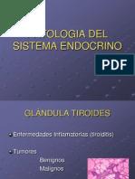 Patologia Del Sitema Endocrino 1217556112241490 9