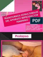 Mujer Trastornos Estructurales Del Aparato Reproductor Femenino