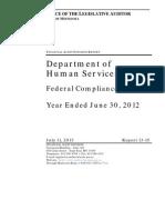 Minnesota Department of Human Services Audit