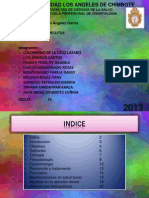 Diabetes - Patologia
