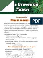 NIOSH-Plantas-venenosas-hiedra.pdf