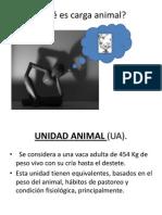 Carga Animal =