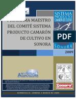 Programa Maestro Camaron final 2009.pdf