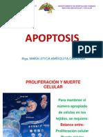Apoptosis 2013 OK