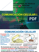 Comunicacion Celular i