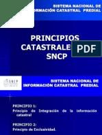 Principios Catastrales 03 Junio 2008