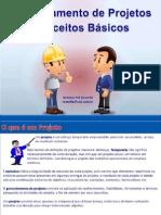 Gerenciamento de Projeto - Conceitos Basicos