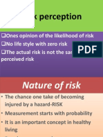 Risk Perception