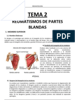 TEMA-2-Fibromialgía.pdf