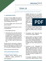 URO_T18.pdf