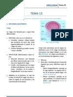 URO_T13.pdf