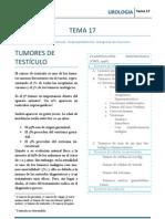 URO_T17.pdf