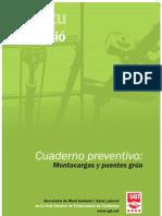 09001724 PuenteGrua