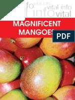 Mango2004 s